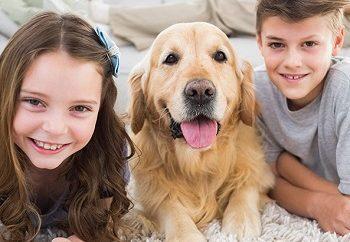 kids-pets-allergies